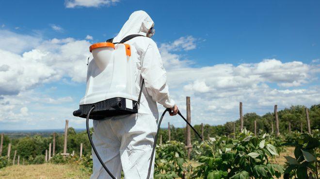 مبيدات حشرية في اغذيتنا